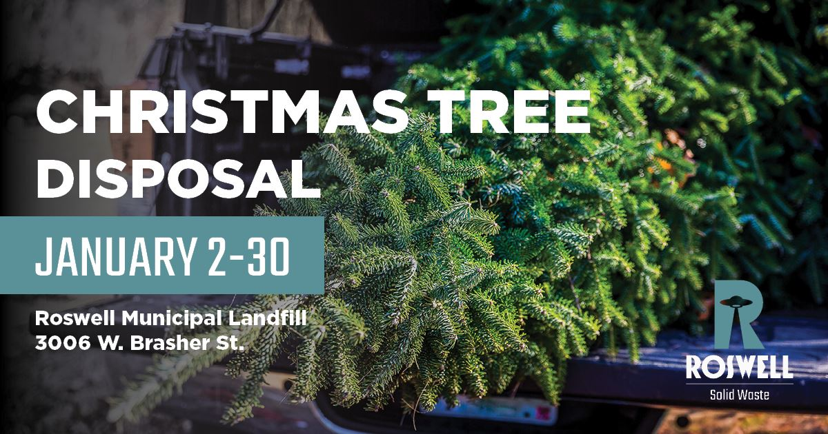 Christmas-tree-disposal-FB