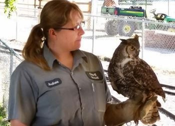 Owl with zookeeper (website)