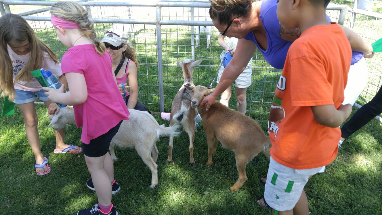 4H Farm Fun at the Zoo- Program on Goats 6-10-16